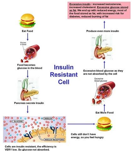 Asuhan Keperawatan Anak Pada Penyakit Kurang Kalori Protein